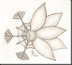 Snowflakeflower